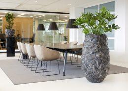 golvväxt företagsväxter