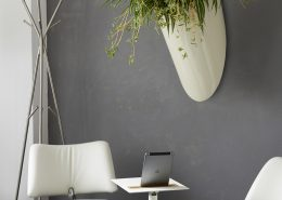 växt på vägg